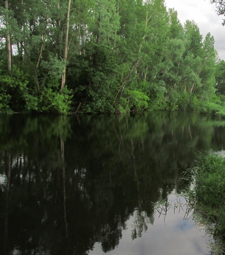 Ольховка Стерлитамак летом фото